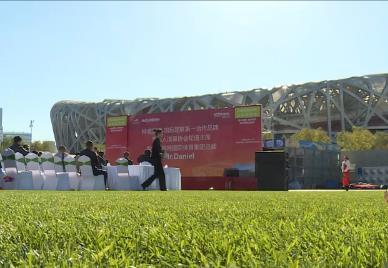 混合草坪系统开启球场绿色科技新时代