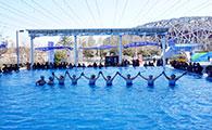【北京】冬泳活动周 爱好者迎冬奥展风采