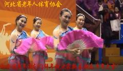 河北省老年人体协向全国老年朋友拜年