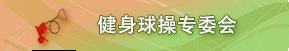 健身球操专委会
